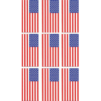 Data Graphics Inc American Flag Decal