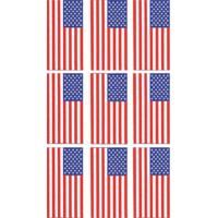 Data Graphics Inc American Flag Decal