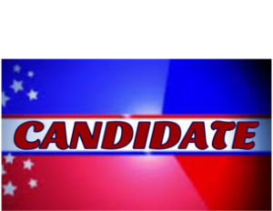 Name_Only Political Campaign Signs 300